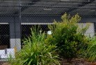 Avonside Chainlink fencing 13