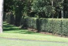 Avonside Wire fencing 15